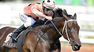 Black Caviar retires undefeated