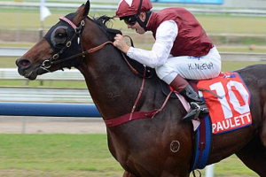 Epaulette brilliant in 10,000