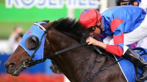 Pierro hits the right note