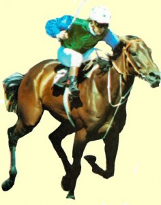 Stage Hit, an Australian champion juvenile filly of the late 70's.