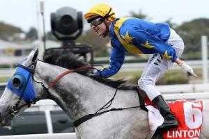 Outsider Linton wins Stradbroke