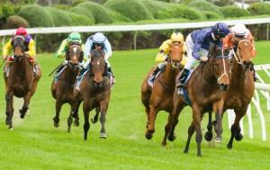 Atlantic Jewel makes it nine straight in winning the Stocks Stakes at Moonee Valley