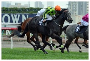 Commanding Jewel winning the Let's Elope Stakes