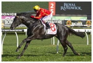 Aussies Love Sport wins G3 Ming Dynasty Qlty at Randwick