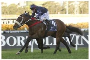 Popular win by Zoustar in Golden Rose