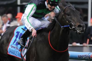 Shamus Award breaks maiden in Cox Plate