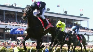 Fiorente captures Australia's premier staying race