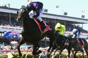 Fiorente's sire good for world breeding