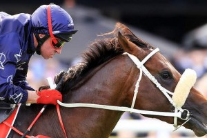 Zoustar owners cash in