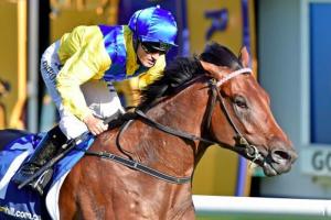 Another 7 winners from Villagebet, Australia's best source of Racing Tips