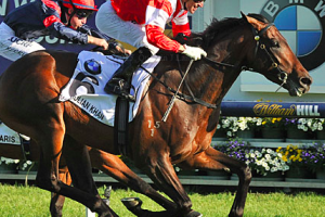 Melbourne Cup 2015 Preview