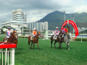 Horses returning to scale at Sha Tin on International Day