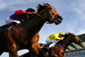 Start betting on horse racing