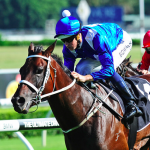 What next for champion mare Winx
