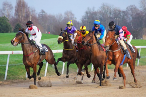 Do's and Don'ts of horse race betting