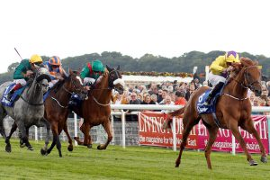 Sea of Class Puts Herself in Arc Mix