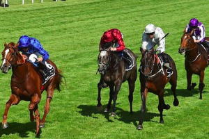 How to find free horse racing tips in Australia