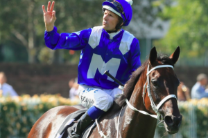 Procession for Winx in Cox Plate