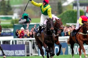 Sizing John set for dramatic Cheltenham return