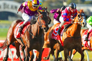 Biggest National Hunt Events you should watch out for – 2019