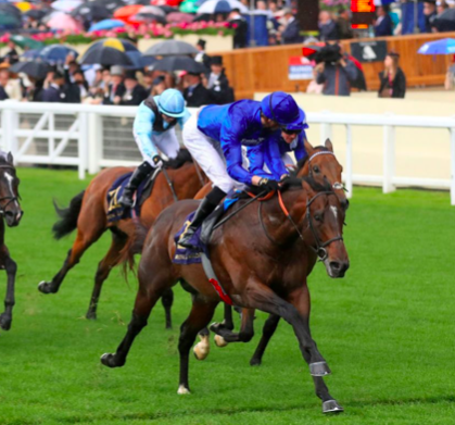 Blue Point wins the King's Stand Stakes at Royal Ascot for the second consecutive year.