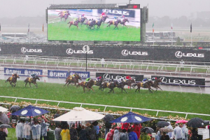Riders on the storm – extreme weather events in Melbourne Cup history