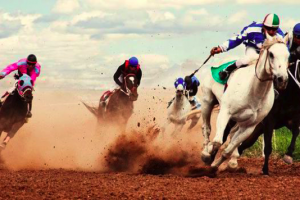 5 horse racing secrets to improve your profit winnings