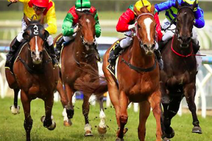 How to maximise profits from betting on horses