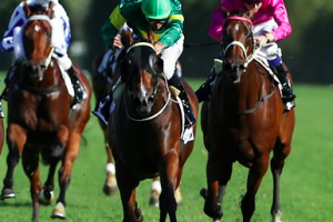 How to use social media to enhance wagering turnover
