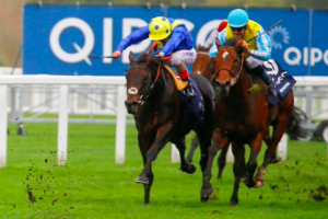 Generating profits from a horse racing business