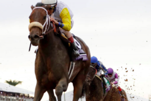 Breeders' Cup 2019 Preview