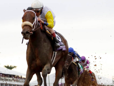2019 Breeders' Cup preview