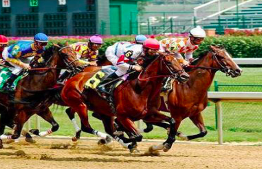 highest horse racing purses