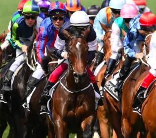 Australia's richest horse races