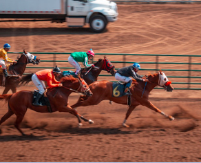 Horse racing betting improves your skills such as the ability to analyse a dynamic and unfolding situation.