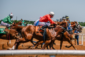 Tips to bet on horseraces