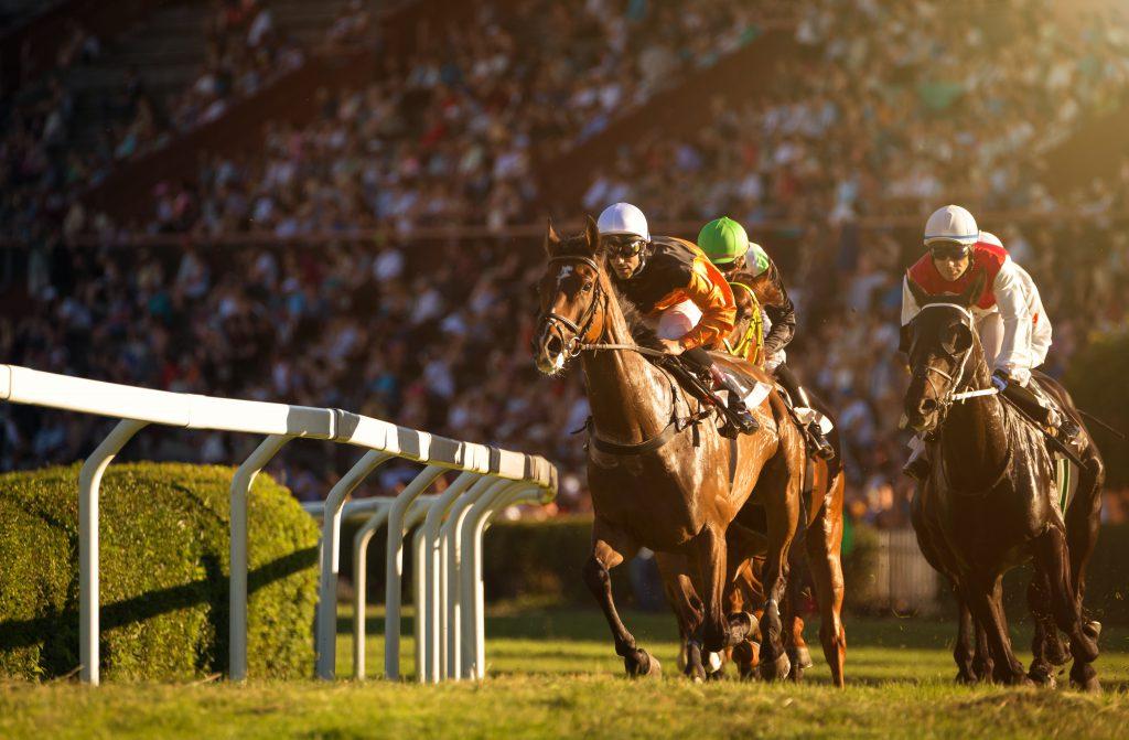 Horse racing during coronavirus pandemic