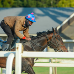 5 Best Trainers For The 2021 Kentucky Derby