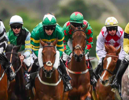 Parlay a special kind of bet with high return
