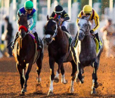 Del Mar Planning For Full Seating Capacity For Horse Races This Summer