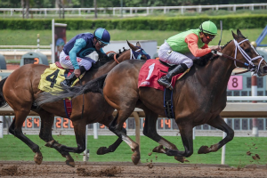Handicaps on Horse Racing Explained