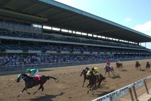 The latest developments in the horse racing world