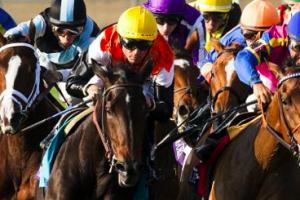5 basic fundamentals for horse racing punters